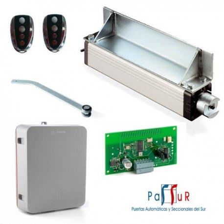 KIT ORION 2010F - Kit electromecánico para basculante de contrapesas de 2 hojas